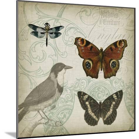 Cartouche and Wings IV-Jennifer Goldberger-Mounted Art Print