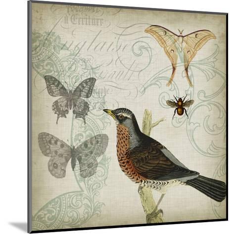 Cartouche & Wings II-Jennifer Goldberger-Mounted Art Print
