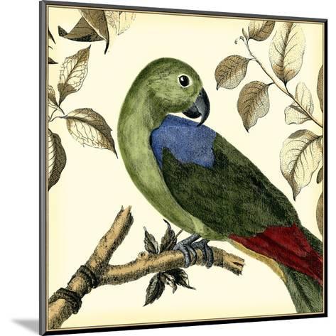 Tropical Parrot III-Martinet-Mounted Art Print