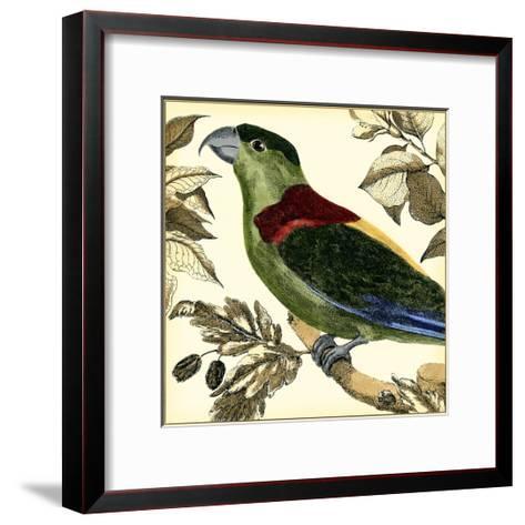Tropical Parrot IV-Martinet-Framed Art Print