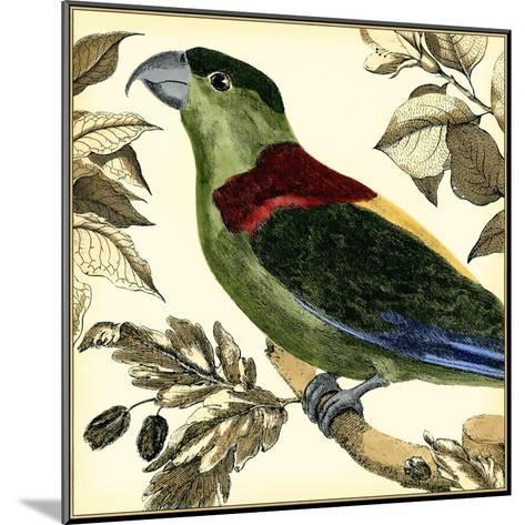 Tropical Parrot IV-Martinet-Mounted Art Print