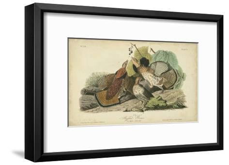 Audubon Ruffed Grouse-John James Audubon-Framed Art Print