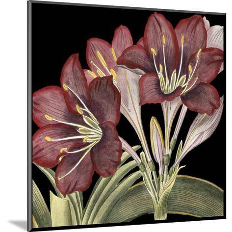 Dramatic Blossoms I-Vision Studio-Mounted Art Print