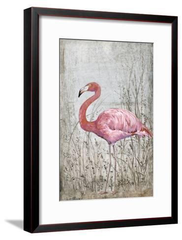 American Flamingo II-Tim O'toole-Framed Art Print