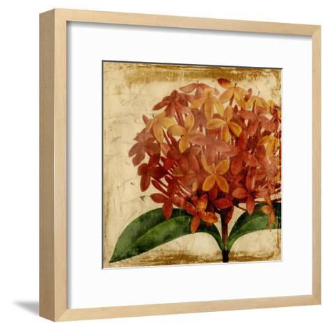 Vibrant Floral III-Vision Studio-Framed Art Print