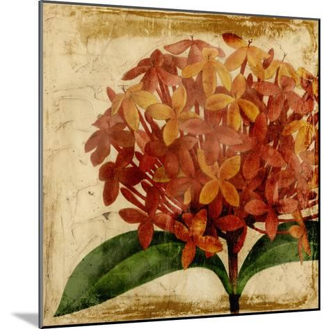 Vibrant Floral III-Vision Studio-Mounted Art Print