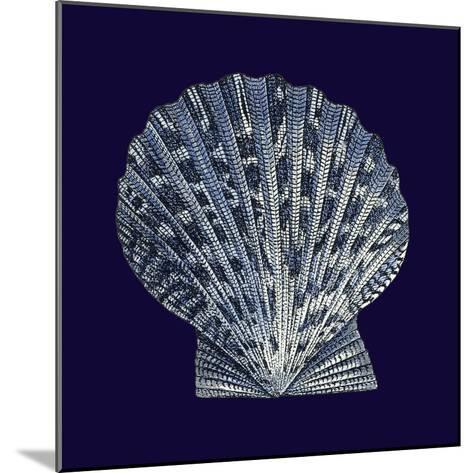 Indigo Shells VIII-Vision Studio-Mounted Art Print