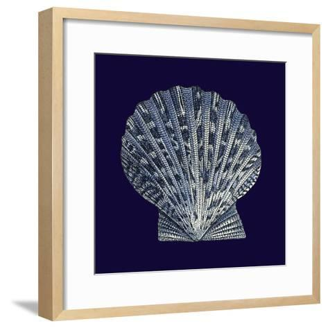 Indigo Shells VIII-Vision Studio-Framed Art Print
