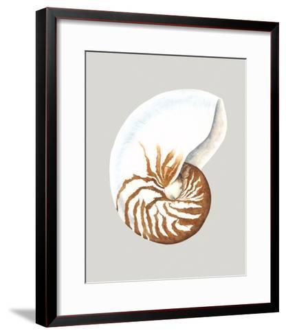 Nautilus-Michael Willett-Framed Art Print