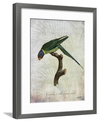 Parrot Jungle IV-John Butler-Framed Art Print