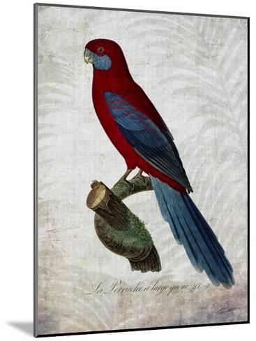 Parrot Jungle II-John Butler-Mounted Art Print