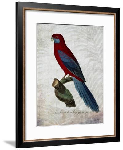 Parrot Jungle II-John Butler-Framed Art Print