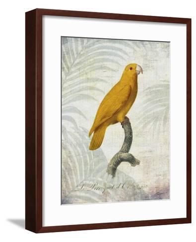 Parrot Jungle V-John Butler-Framed Art Print