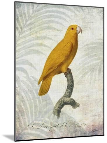 Parrot Jungle V-John Butler-Mounted Art Print