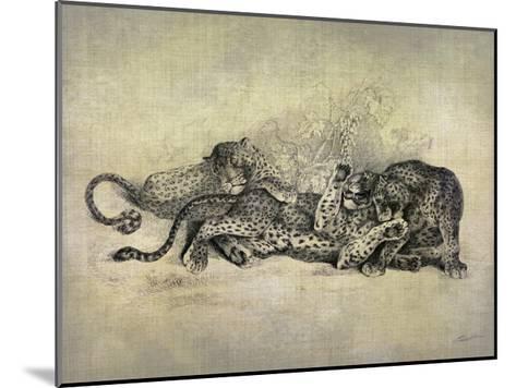 Big Cats I-John Butler-Mounted Art Print