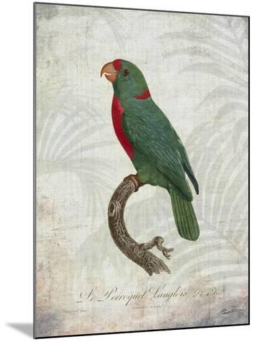 Parrot Jungle VI-John Butler-Mounted Art Print