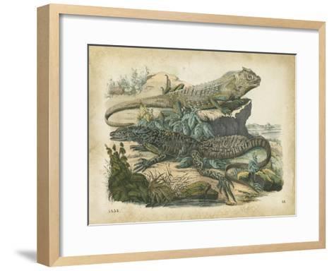 Nature's Gathering VI-John Wiek-Framed Art Print
