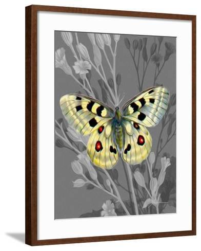On Display II-James Burghardt-Framed Art Print