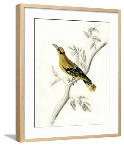 Rustic Aviary II-Naomi McCavitt-Framed Art Print