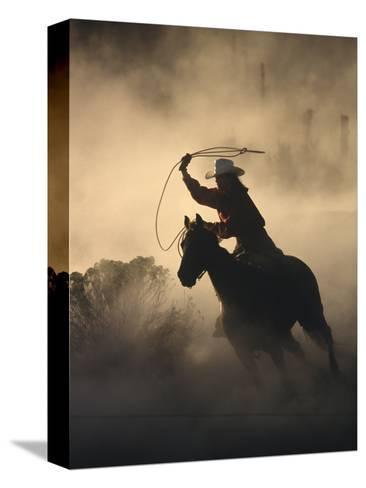 Cowgirl-DLILLC-Stretched Canvas Print
