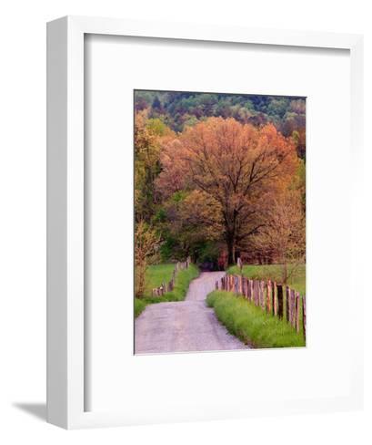 Sparks Lane, Cades Cove, Great Smoky Mountains National Park, Tennessee, USA-Adam Jones-Framed Art Print