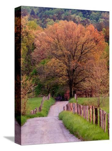 Sparks Lane, Cades Cove, Great Smoky Mountains National Park, Tennessee, USA-Adam Jones-Stretched Canvas Print