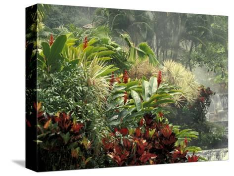 Woman at Tabacon Hot Springs near Arenal Volcano, Costa Rica-Stuart Westmoreland-Stretched Canvas Print