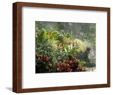 Woman at Tabacon Hot Springs near Arenal Volcano, Costa Rica-Stuart Westmoreland-Framed Art Print