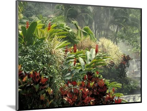 Woman at Tabacon Hot Springs near Arenal Volcano, Costa Rica-Stuart Westmoreland-Mounted Photographic Print