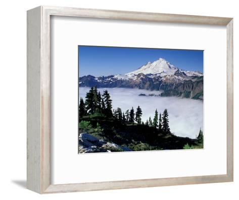 View of Mount Baker from Artist's Point, Snoqualmie National Forest, Washington, USA-William Sutton-Framed Art Print