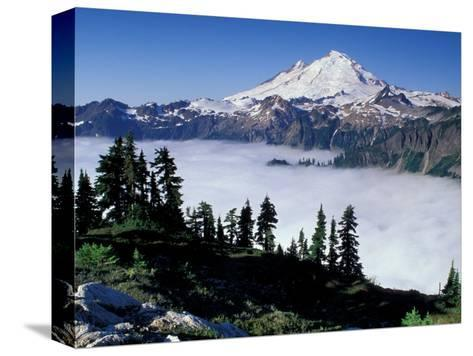 View of Mount Baker from Artist's Point, Snoqualmie National Forest, Washington, USA-William Sutton-Stretched Canvas Print