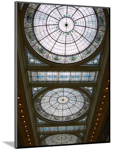 Skylights in Penn Station, Baltimore, Maryland, USA-Scott T^ Smith-Mounted Photographic Print