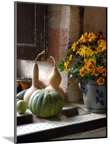 Gourds and Flowers in Kitchen in Chateau de Cormatin, Burgundy, France-Lisa S^ Engelbrecht-Mounted Photographic Print