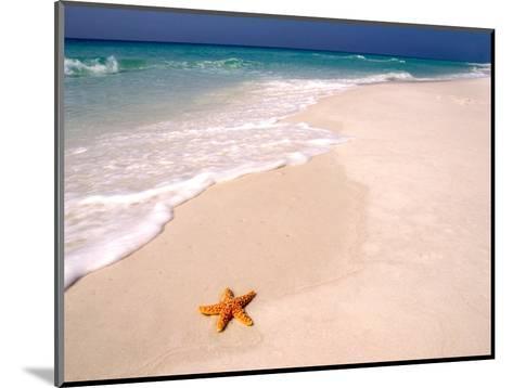 Gulf Island National Seashore, Santa Rosa Island, Florida-Maresa Pryor-Mounted Photographic Print