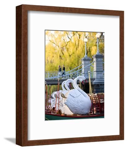 Swanboats, Public Garden, Boston, Massachusetts, USA-Walter Bibikow-Framed Art Print