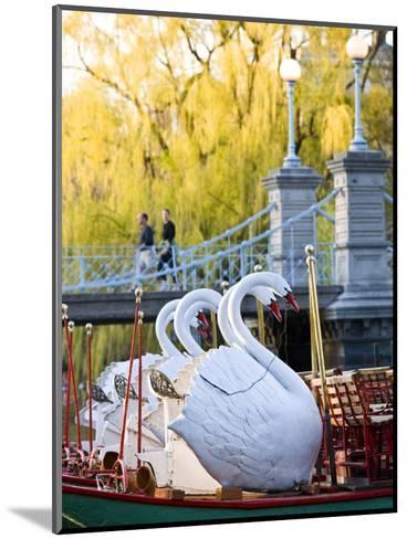 Swanboats, Public Garden, Boston, Massachusetts, USA-Walter Bibikow-Mounted Photographic Print