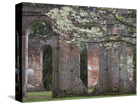 Ruins in the Spring of Old Sheldon Church, South Carolina, Usa-Joanne Wells-Stretched Canvas Print