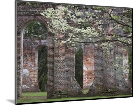 Ruins in the Spring of Old Sheldon Church, South Carolina, Usa-Joanne Wells-Mounted Photographic Print