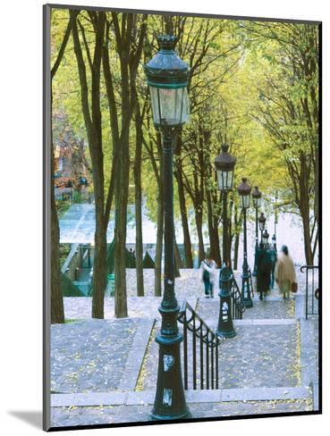 Autumn, Rue De Foyatier Steps to the Place Du Sacre Coeur, Montmartre, Paris, France-Walter Bibikow-Mounted Photographic Print