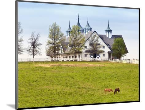 Thoroughbred Horses Grazing, Manchester Horse Farm, Lexington, Kentucky, Usa-Adam Jones-Mounted Photographic Print