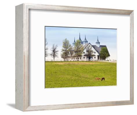 Thoroughbred Horses Grazing, Manchester Horse Farm, Lexington, Kentucky, Usa-Adam Jones-Framed Art Print