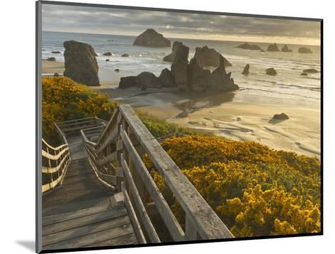 A Stairway Leads to the Beach in Bandon, Oregon, USA-William Sutton-Mounted Photographic Print