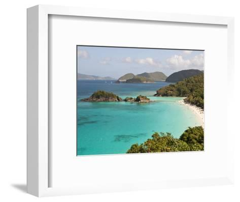 Underwater Snorkeling Trail, St John, United States Virgin Islands, USA, US Virgin Islands-Trish Drury-Framed Art Print