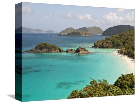 Underwater Snorkeling Trail, St John, United States Virgin Islands, USA, US Virgin Islands-Trish Drury-Stretched Canvas Print