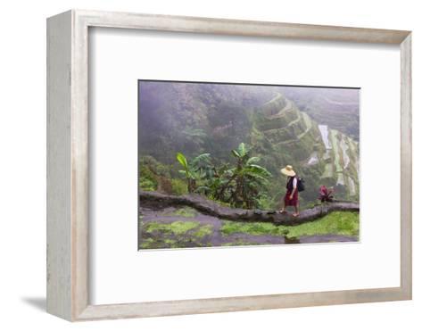 Igorot Woman, Rice Terraces, Agriculture, Philippine Cordilleras, Philippines-Keren Su-Framed Art Print