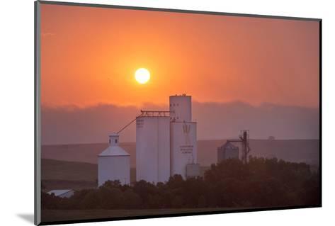 Foggy Sunrise over Grain Elevator, Farm, Kathryn, North Dakota, USA-Chuck Haney-Mounted Photographic Print