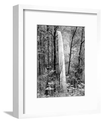 Latourell Falls, Columbia River Gorge National Scenic Area, Oregon, USA-Charles Crust-Framed Art Print