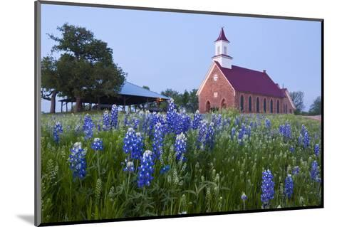 Art Methodist Church and Bluebonnets Near Mason, Texas, USA-Larry Ditto-Mounted Photographic Print