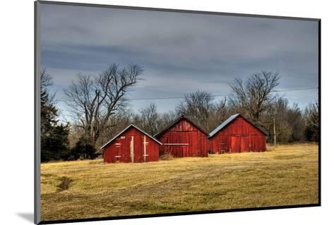 Three Barns, Kansas, USA-Michael Scheufler-Mounted Photographic Print