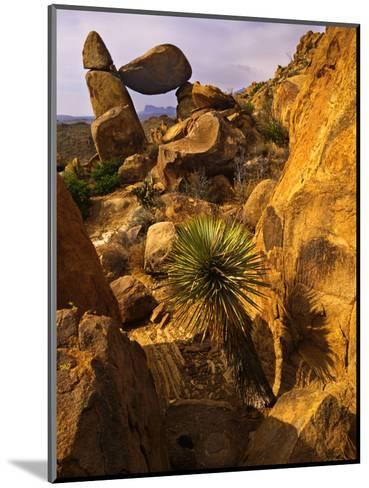 Rock Formations in Grapevine Hills, Big Bend National Park, Texas, USA-Jerry Ginsberg-Mounted Photographic Print